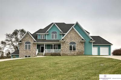 Single Family Home For Sale: 19411 Schram Road