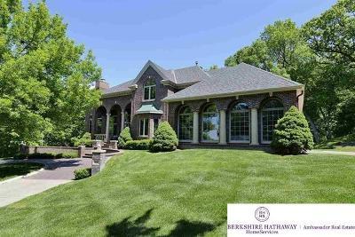 Omaha Single Family Home New: 21924 Marcy Circle