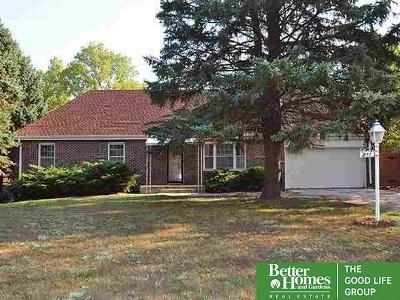 Bellevue Single Family Home For Sale: 211 Bellevue Boulevard North