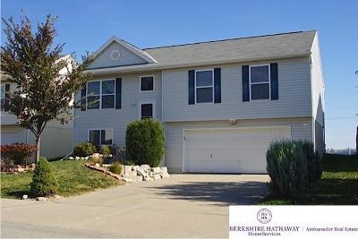 Omaha Single Family Home New: 5807 S 193 Street