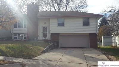 Omaha Single Family Home New: 11123 U Street