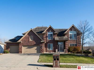 Omaha Single Family Home New: 2903 N 161st Street
