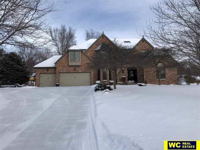 Single Family Home For Sale: 1024 Stone Creek Drive