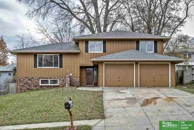 Bellevue Single Family Home New: 3205 Redwing Drive