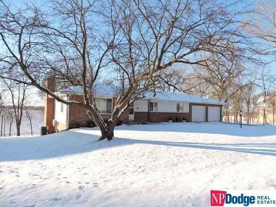 Elkhorn Single Family Home For Sale: 1600 N 216 Street