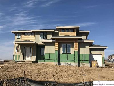 Omaha Single Family Home For Sale: 17702 Spencer Street