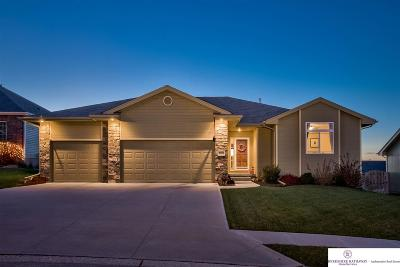 Single Family Home For Sale: 9710 S 173 Street