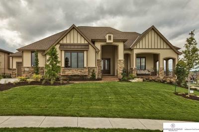 Omaha Single Family Home For Sale: 12903 Craig Street