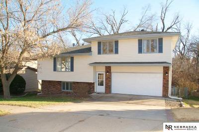 Bellevue Single Family Home For Sale: 3723 Lawnwood Drive