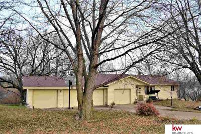 Cass County Single Family Home For Sale: 9619 Rock Creek Road