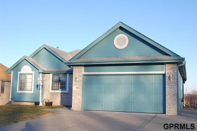 Papillion Single Family Home For Sale: 701 Castle Pine Drive