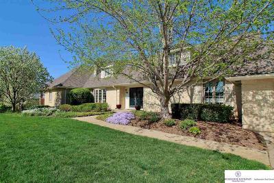 Omaha Single Family Home For Sale: 165 S 216 Circle