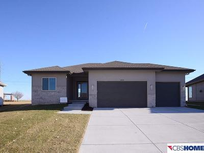 Elkhorn Single Family Home For Sale: 4419 N 204th Avenue