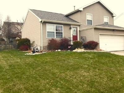 Omaha Single Family Home For Sale: 2102 N 166 Street