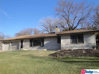 Omaha Single Family Home New: 1017 S 92nd Street