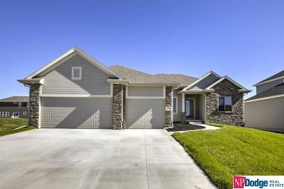 Elkhorn Single Family Home New: 4933 N 206 Street