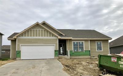 Elkhorn Single Family Home For Sale: 5107 N 208 Avenue