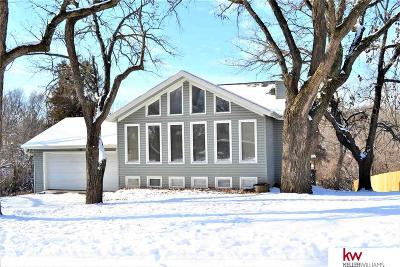 Plattsmouth Single Family Home For Sale: 19702 Ewel Court