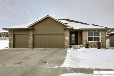 Omaha Single Family Home For Sale: 2716 N 189 Street