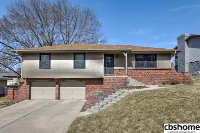 Omaha Single Family Home For Sale: 11666 Roanoke Boulevard