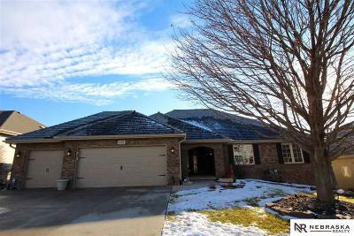 Omaha Single Family Home For Sale: 17267 Madison Street