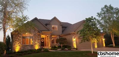 Omaha Single Family Home For Sale: 17110 Howard Plaza