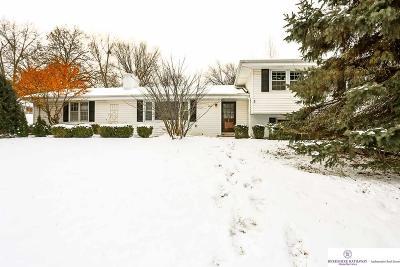 Omaha Single Family Home For Sale: 8607 Douglas Street