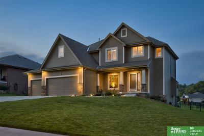 Bellevue Single Family Home For Sale: 2104 Barbara Avenue