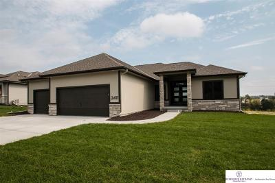 Omaha Single Family Home For Sale: 2390 S 220 Avenue