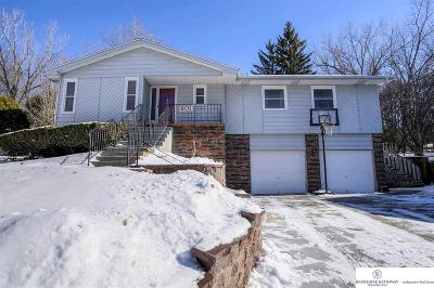 Sarpy County Single Family Home For Sale: 801 Moore Drive