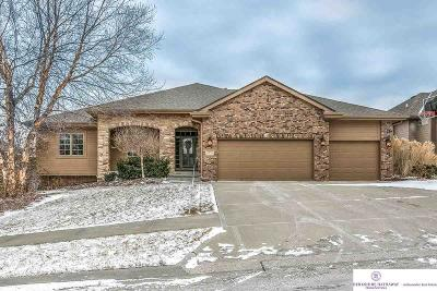Omaha Single Family Home New: 3217 S 184th Terrace