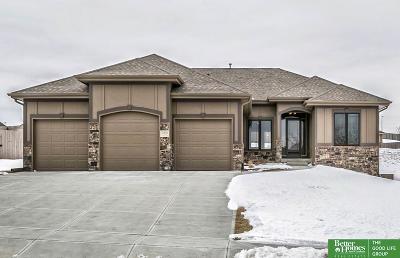 Omaha Single Family Home New: 10815 S 175th Street