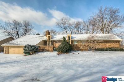 Omaha Single Family Home New: 9978 Fieldcrest Drive