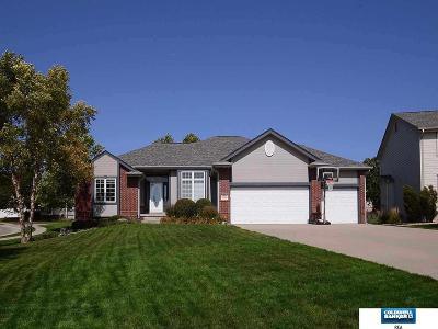 Omaha NE Single Family Home New: $358,000