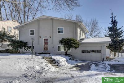 Sarpy County Single Family Home New: 1317 Englewood Drive