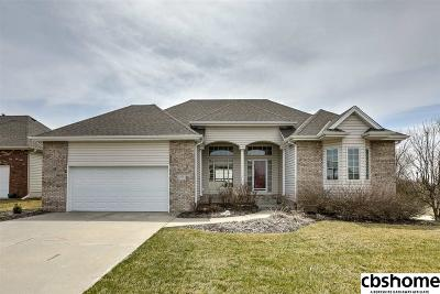 Cass County Single Family Home For Sale: 165 Eagle View