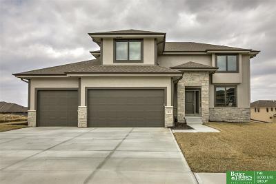 Omaha Single Family Home For Sale: 18810 Spaulding Street