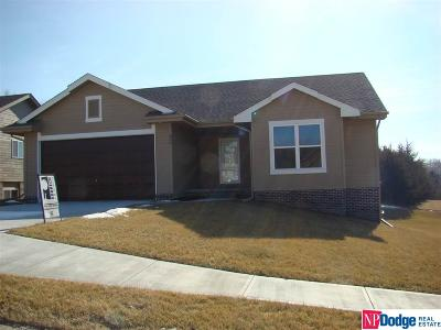Cass County Single Family Home For Sale: 926 3rd Avenue Circle