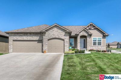 Omaha Single Family Home For Sale: 12652 Scott Street