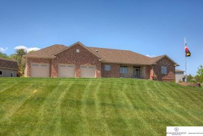 Gretna Single Family Home For Sale: 11824 S 224 Street