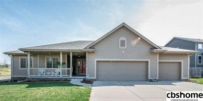 Single Family Home For Sale: 19210 L Street