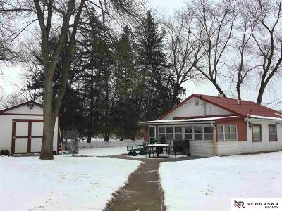 Cass County Single Family Home For Sale: 36502 Two Gates Drive