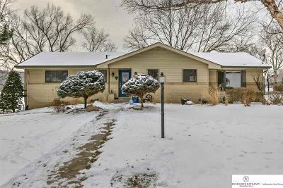 Omaha Single Family Home For Sale: 2226 S 91 Street