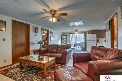 Bellevue Single Family Home For Sale: 1810 Park Circle