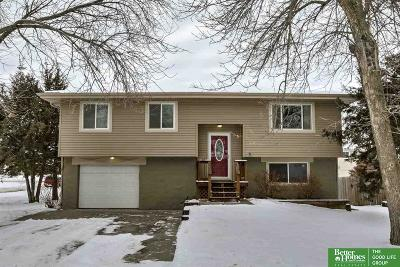 Saunders County Single Family Home For Sale: 402 N 29th Street