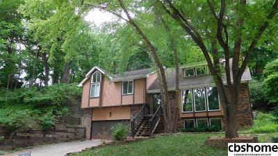 Bellevue Single Family Home For Sale: 826 Hidden Hills Drive