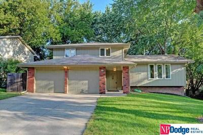 Bellevue Single Family Home For Sale: 3108 Redwing Drive