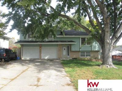Omaha Single Family Home For Sale: 10516 S Circle