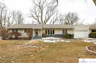 Omaha Single Family Home For Sale: 2106 S 87 Avenue