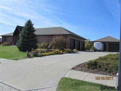 Gretna Single Family Home New: 11720 S 202 Street
